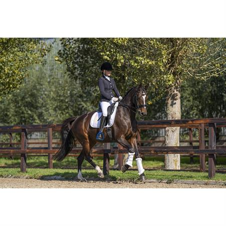 Bridle Charm QHP Wings