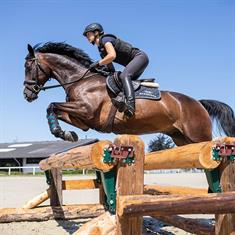 Chaussures d'Écurie Ariat Telluride II H2O Hommes