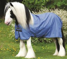 Competition Jacket Harry's Horse Contrast Kids
