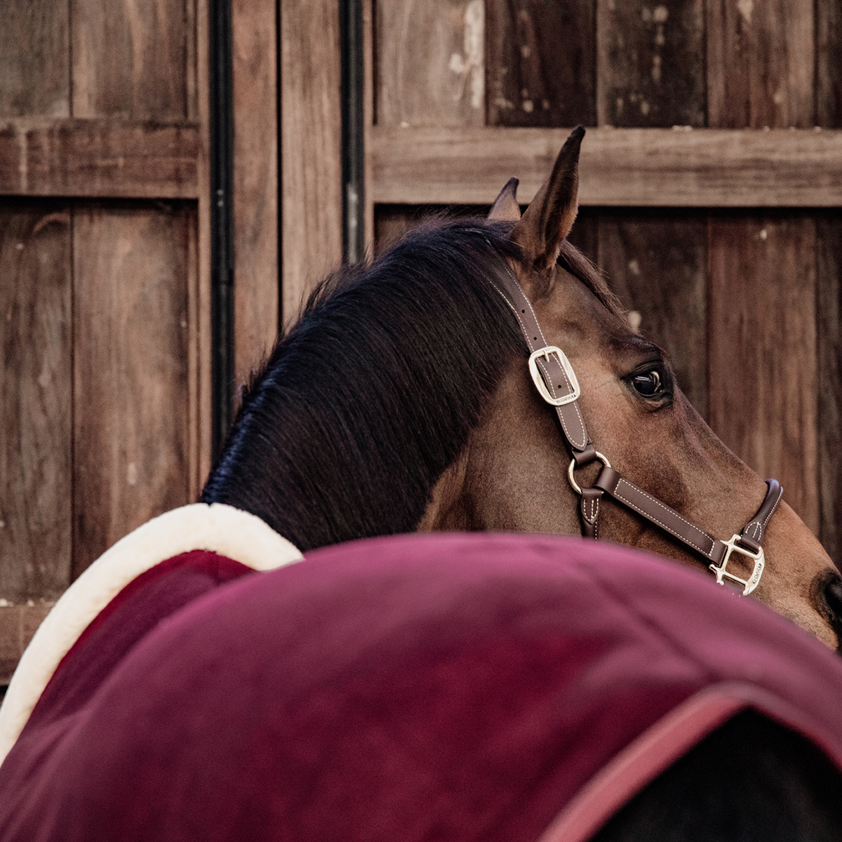 Halsstuk Bucas Sun Shower Combi, 185 cm in 900