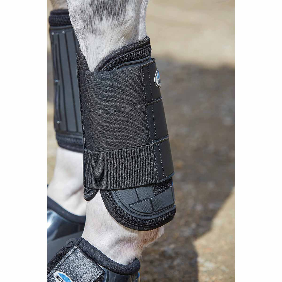 Hoofdstel Montar Excellence Jumping, Extra fullin brown
