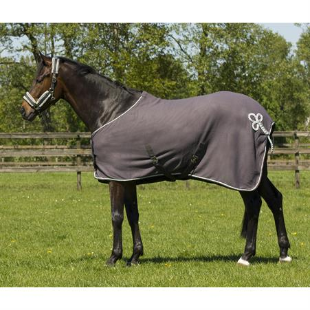 Leggings d'Équitation Euro-star Essential Glory Silicone