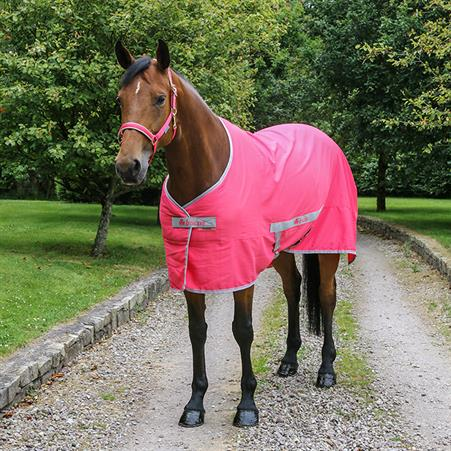 Lunging Body Strap Elastic Harry's Horse