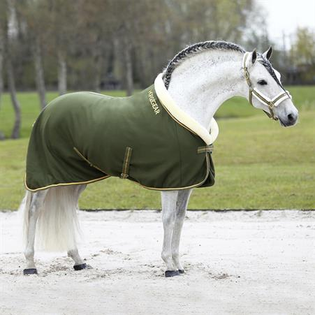 Lunging Girth Neon