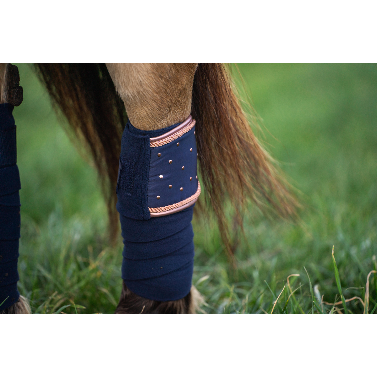 Showshirt Harry's Horse Lace, Lin white