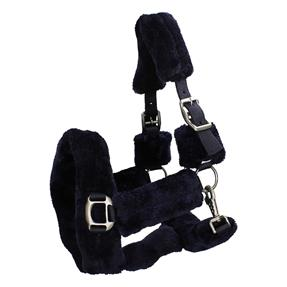 Thermoshop | Horsegear Levy