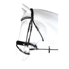 Veste Imperial Riding Shiny Day